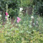 Fællesareal med blomster